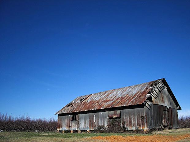 South-Carolina_iStock_00000.jpg