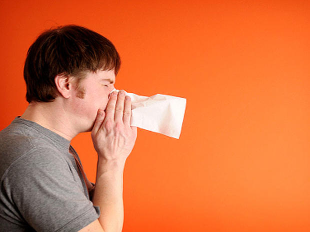 Stop the sneezing - Allergy relief: 20 simple secrets - Pictures