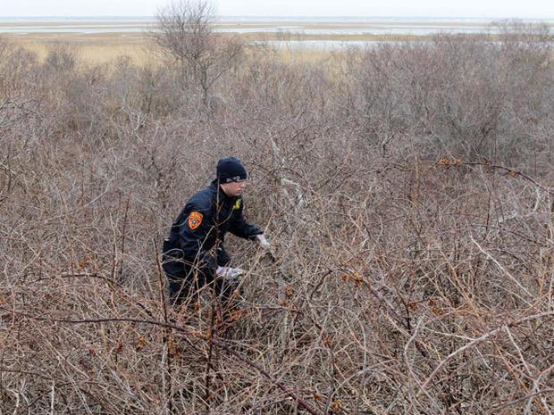 Long Island serial killer? 2 more sets of bones NY beach; brings total to 10