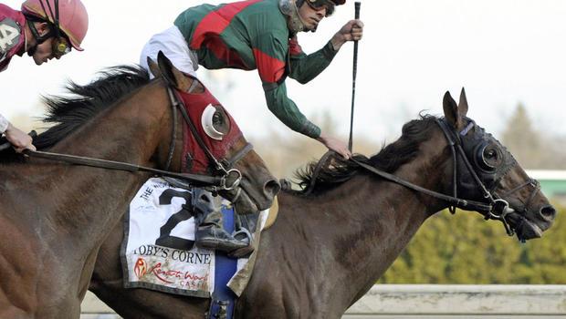 Toby's Corner, Kentucky Derby hopeful