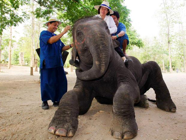 elephant-therapy6-AP110422029907.jpg