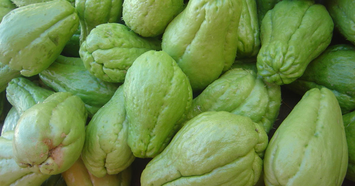 Chayote 15 Strange Fruits And Vegetables Cbs News