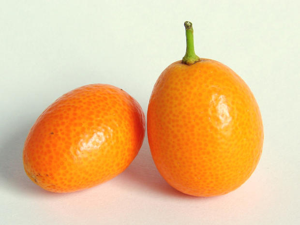 Kumquat_Wikimedia_David_R._Tribble.jpg