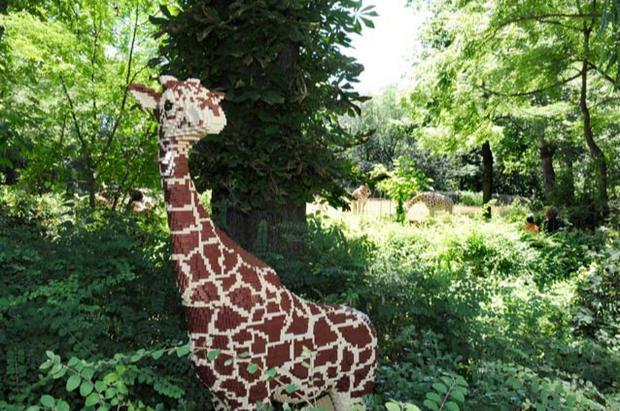 Zoo built in building blocks