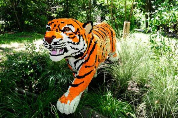 Bronx Zoo exhibit