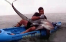 Caught on tape: Man wrestles shark