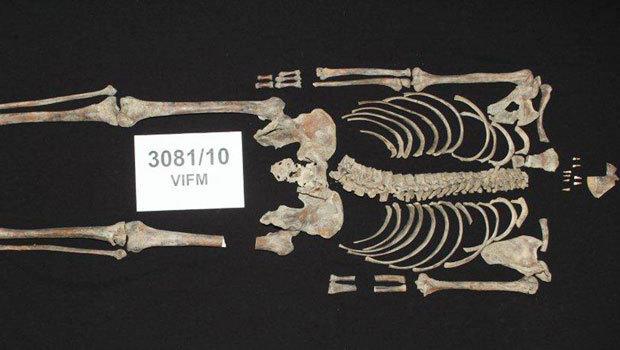 Bones of Australian bandit Ned Kelly identified�