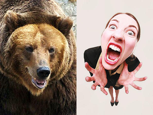 bear, woman, anger, stock