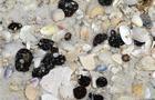 File photo from Sept. 14 shows seashells and tar balls washed up along Gulf Islands National Sea Shore near Pensacola Beach, Fla.