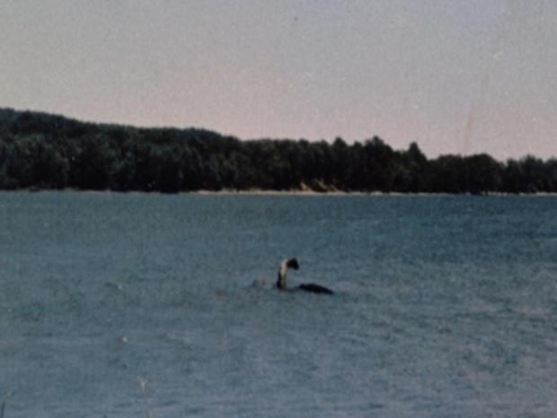 Champ in Lake Champlain
