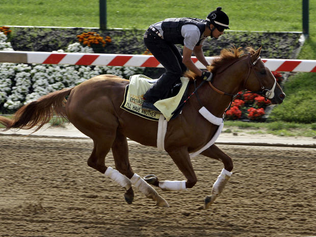 I'll Have Another, winner of the Kentucky Derby, gallops under exercise rider Johnny Garcia at Pimlico Race Course in Baltimore May 16, 2012.