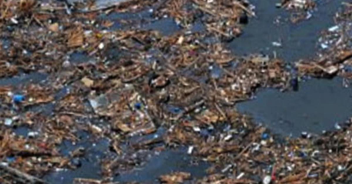 japan tsunami debris toxicity u s concern