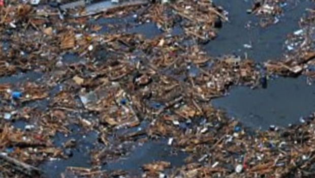 Some of the estimated one-and-a-half tons of debris from the Japanese tsunami floating toward U.S. in Pacific Ocean