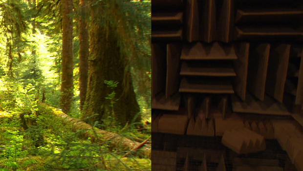 Olympic National Park and Orfield Laboratories
