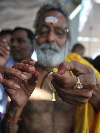Indian believers swallow live fish as asthma cure