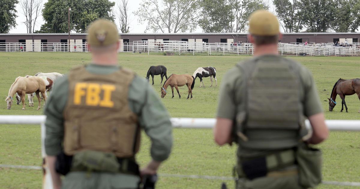 Okla  horse ranch raided for alleged cartel ties - CBS News