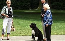 Betty White at the White House, meets Bo