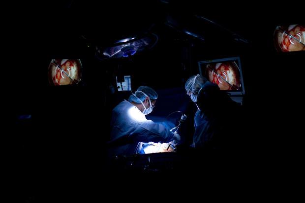 147206114-Kidney-015.jpg