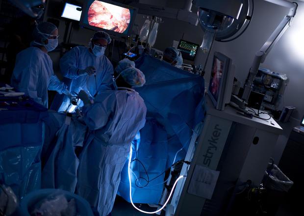 147206159-Kidney-017.jpg
