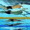 019-OlympicsDayFive.jpg