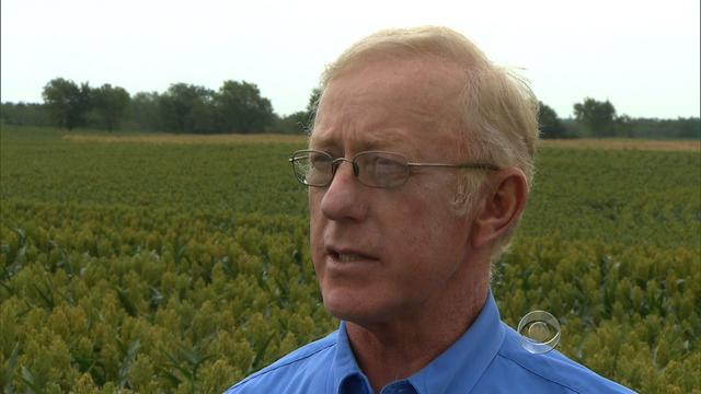 Nebraska farmer Donald Bloss in front of one of his sorghum fields