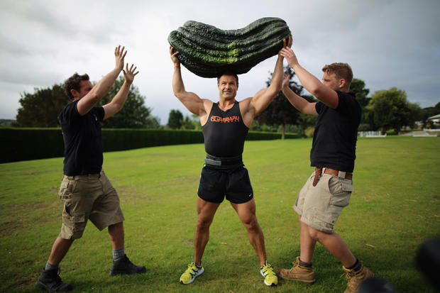 Giant vegetables from UK festival