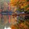 fallcolors_AP570852394899.jpg