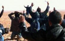 Algeria standoff over, 23 hostages dead
