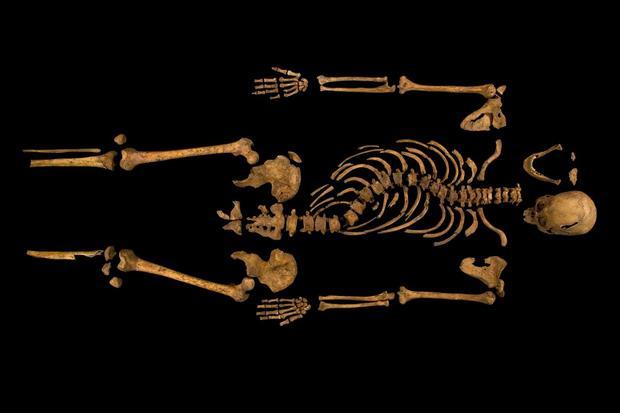 richard_III_skeleton.jpg