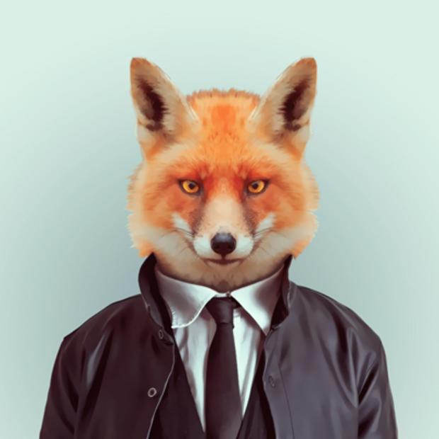 fox_417.jpg