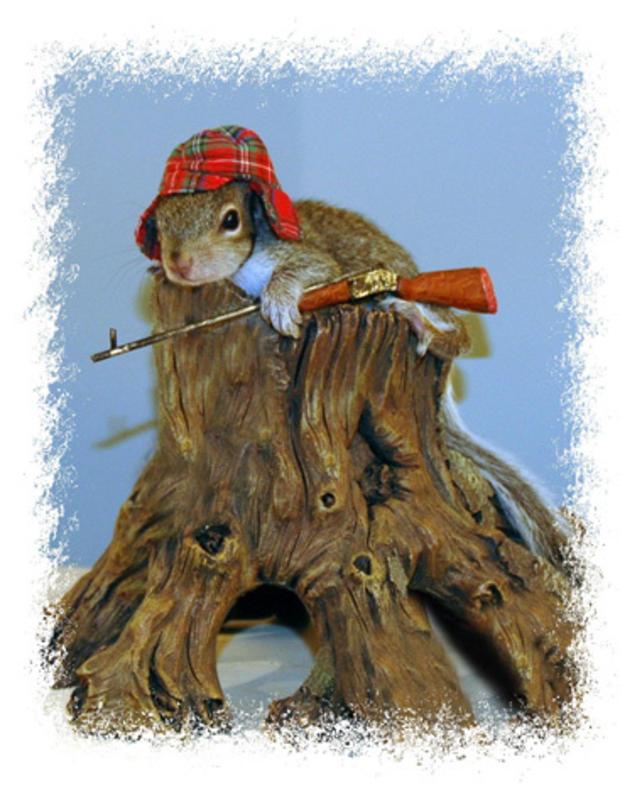 023_Squirrel_Hunting.jpg