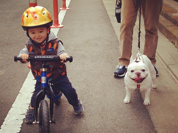 Tasuku and bulldog buddy Muu go for a bike ride