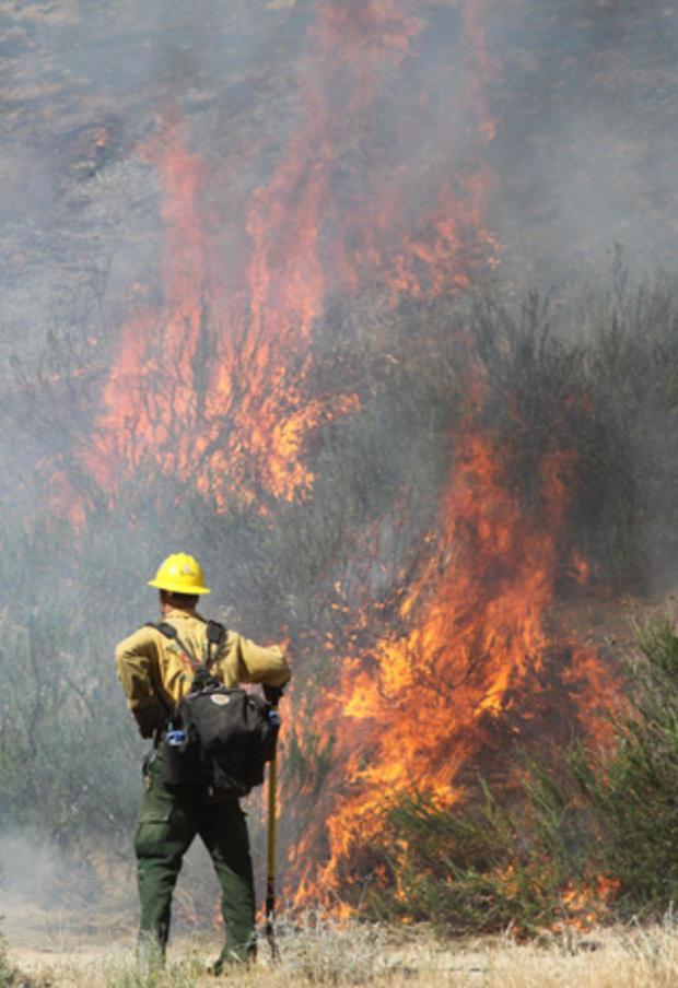 Wildfire_vAP903541420930.jpg