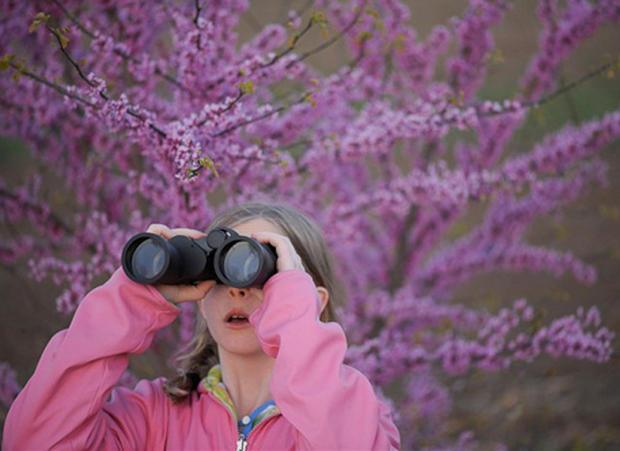 birdwatcher.jpg