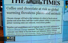 Headlines at 8:30: Climate change could impact coffee, chocolate