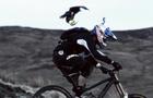 Peregrine_Falcon_Gee_Atherton_Red_Bull_Earth_Unplugged.jpg