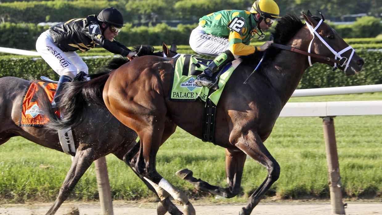 essay horse racing