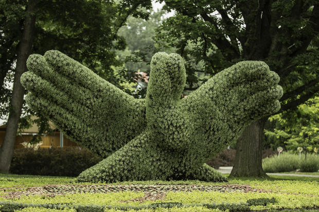 Incredible living sculptures
