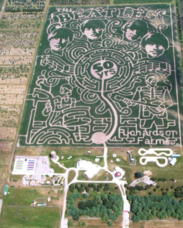 2013_richardson_maze.jpg