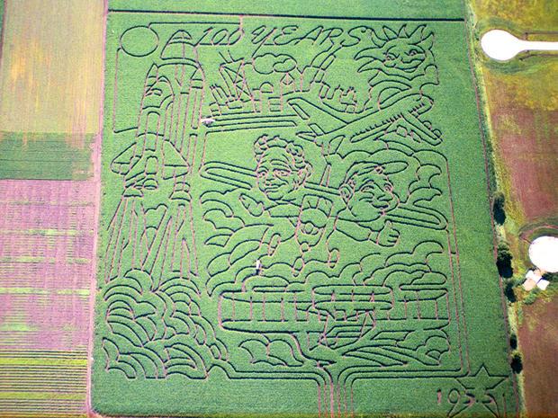 2003_Richardson_maze.jpg