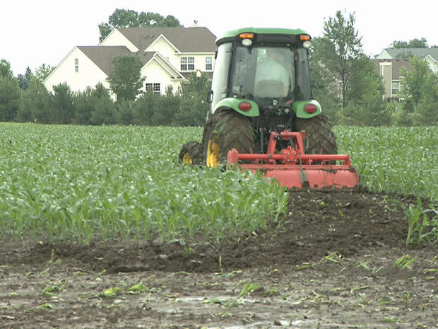 Maze_tractor.jpg