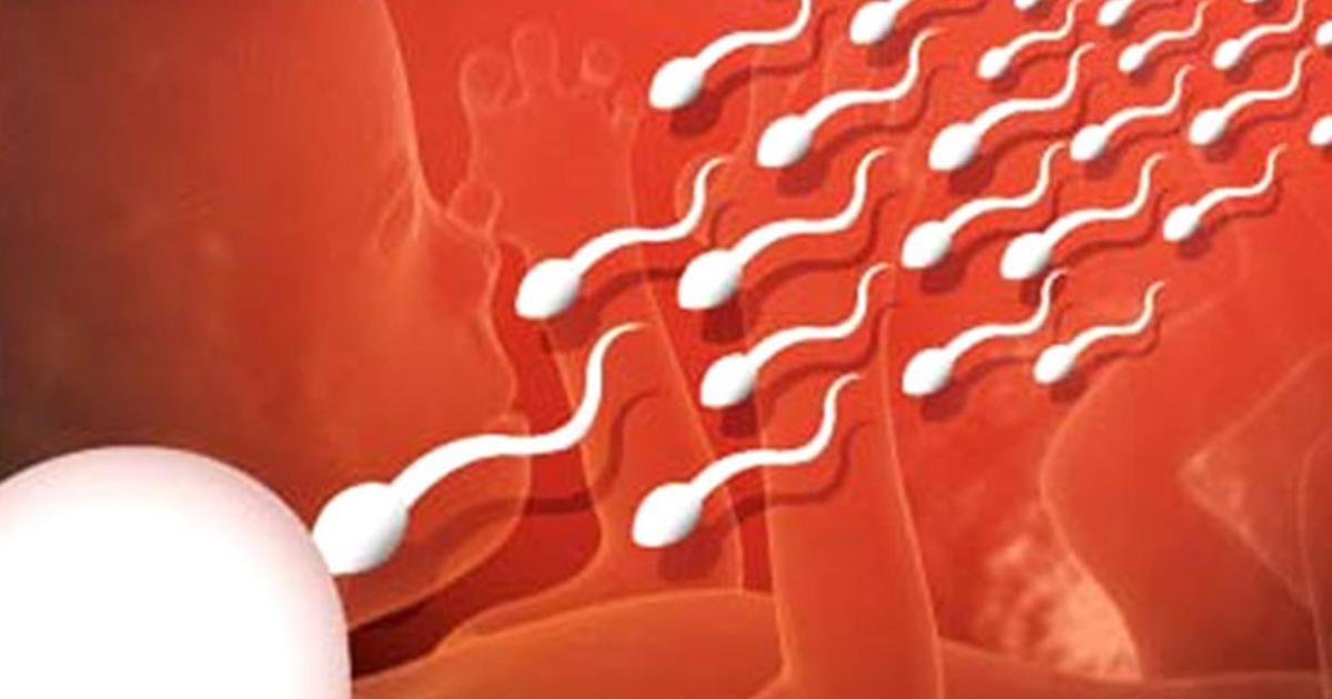 излил сперму внутрь - 2