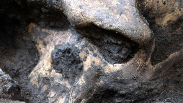 131017-ancient_skull.jpg