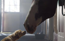 Super Bowl commercials 2014: Watch, and vote in our poll!