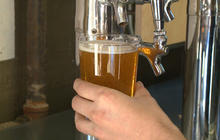 Limited supply of hops could create beer shortage
