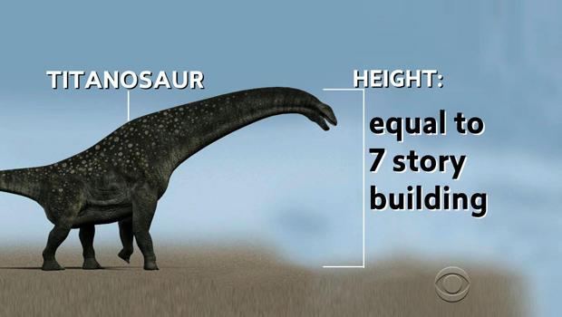 dinosaurheight.jpg