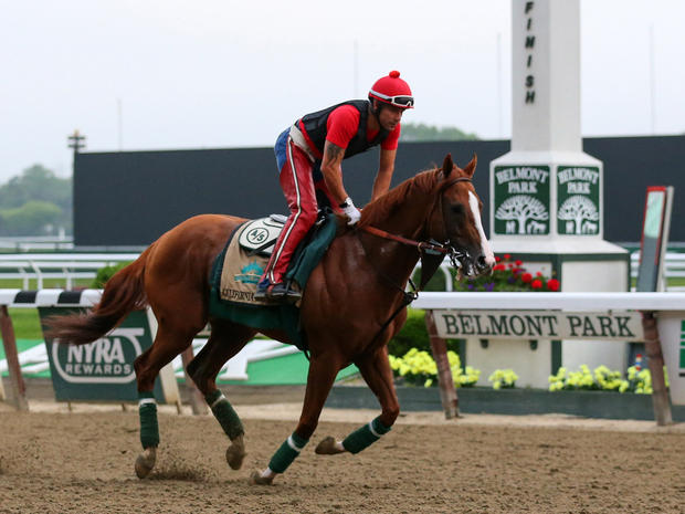 California Chrome, ridden by exercise rider Willie Delgado, passes the finish line as they jog the track during workouts in preparation for the 2014 Belmont Stakes at Belmont Park June 4, 2014, in Elmont, N.Y.