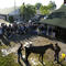 Past winning horses of Belmont Stakes