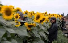 Daunting investigation ahead in Ukraine war zone