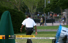 Toddler squeezes through White House fence in security breach